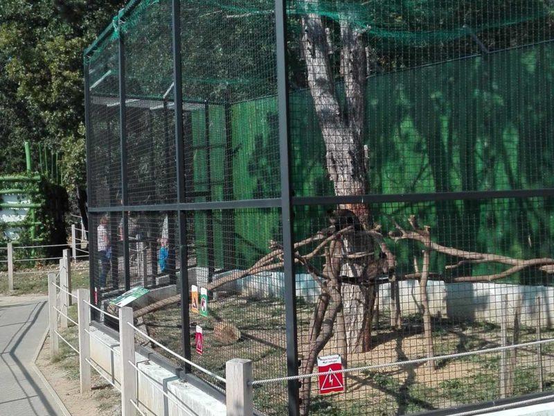 2015 – Pécsi Zoo Állatkert részfeladatai